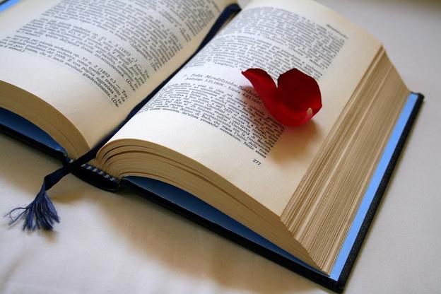 Картинки с надписями о книгах, видом